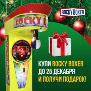 Automatic dynamometer boxer RockyBoxer from the manufacturer