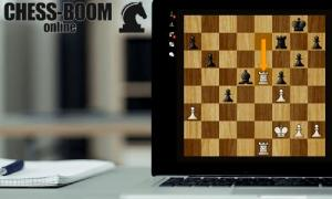 Free chess game with computer. To play chess with a computer