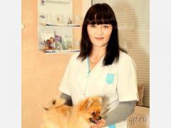 Лечение и консультация мелких домашних животных