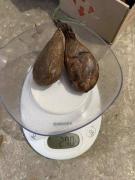Продается струя бобра вяленая, высокое качество