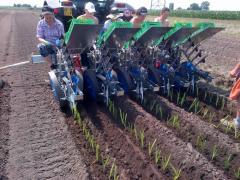 The Ferrari transplanting machines