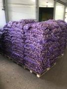 WE SELL POTATO WHOLESALE